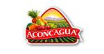 cl_ch_2019_aconcagua